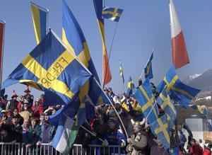 En svensk klack hjälpte fram hälsingeduon Anders Södergren och Jörgen Brink till en varsin medalj.