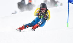 Lukas Andersson, Friska Viljor på väg mot brons i Super-G.