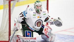 Foto: Björn Lindgren/TT – Gustafsson under fjolårets säsong