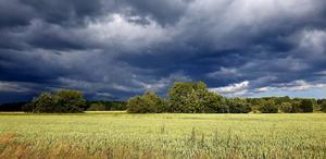 Kontrasten mellan olika väder. Värmande sol och svalkande regn. Foto: Stefan Bjärkemark