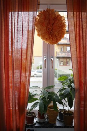 Orange är Emmelies favoritfärg. Den färgar hela lägenheten.