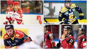Nicolai Meyer, Samuel Fagemo, Mikael Ahlén och Lukas Haudum ska alla finnas på Södertäljes radar. Foton: Bildbyrån och TT. Montage: Hockeypuls.