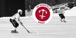Det blir ingen bandy i Norrtälje på söndag.