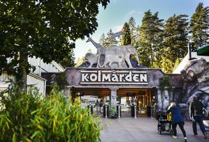 Kolmårdens djurpark. Foto: Pontus Lundahl / TT