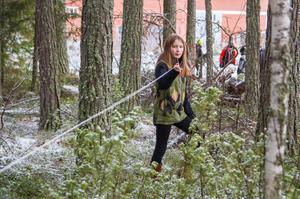 Linnea Karlsson från Los skola mäter trädstammar per hektar i skogsgläntan bakom Naturbruksgymnasiet i Ljusdal.