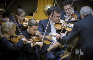 Första satsen av Mozarts Pianokonsert nr 20 gavs en tydlig uvertyrsmak av de häftiga stråkarna. I främre raden ser vi Ylva Larsdotter, Linnea Andersson Meilink och Mikael CrafoordFoto: Lennart Hyse