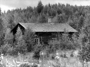 Övergivet hus bland växande sly. Foto: Ingvar Karmhed/TT arkiv