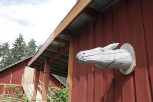 Med virke från den egna skogen har Unna själv byggt gårdens stall.