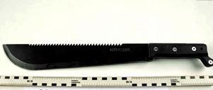 Det vapen som enligt åklagaren använts vid brottet. Foto: Polisen