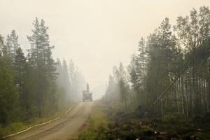 Totalt beräknas 17,5 mil skogsbilväg ha skadats i brandområdet runt Kårböle.