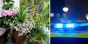 Många trädgårdskrukor har stulits på senare tid, uppger Polisen. Foto: Christine Olsson/TT
