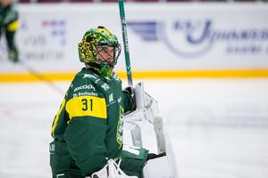 Adam Werner imponerade förra säsongen, nu är det Oscar Masiellos tur. Foto: Bildbyrån.