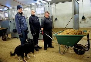 Sandra Schmidt, Pernilla Karlsson, Izabelle Burgman och stallhunden Alina är glada över de satsningar som nu görs hos Säterbygdens ridklubb.