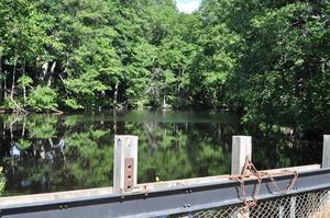 Där bron går över ån finns också en damm. Kommunen ska låta dykare gå ned i dammen för att få hela konstruktionen undersökt ordentligt.