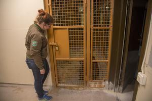 Furuviks djurchef Natalie Magnusson är oerhört tacksam att Linda återigen valde att adoptera.