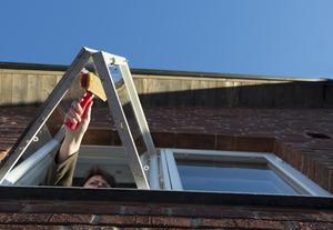 Nope. Der är verkligen inte nödvändigt att tvätta fönstren på insidan före jul. Foto: Fredrik Sandberg/Scanpix