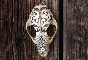 En grävlings kranium förvandlad till konst.