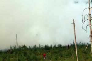 Rökutvecklingen var kraftig när brandmännen kom på plats  i skogen intill Kölaråsen.