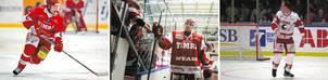 Profiler från Tjeckien som spelat både i Timrå IK och NHL; Jan Nemecek, Radek Smolenak och Robert Schnabel.