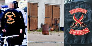 Chicanos i Sandviken ska ha blivit X-team. Bild: Sofie Isaksson/Jenny Lundberg/Polisen