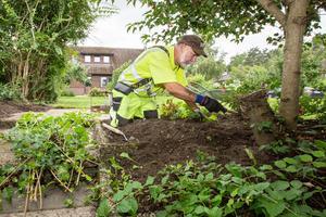 Trädgårdsarbete är en av de saker som Veterankraft arbetar med, här Lennart Nyblom.