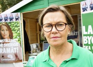 – Vi har en mycket dyster ekonomi, säger Caroline Schmidt (C).