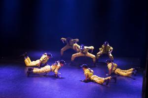 Dansarna visade också upp finaldansen från VM.