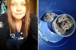 Annika Björklund kunde rädda fyra små hamstrar från en säker död i sophuset. Bild: Maria Björklund