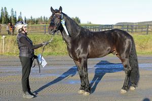 Zitor från Oviken, med Emma Gabrielsson, godkändes på Wången.