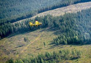 En italiensk Canadair CL-415 vattenbombare i arbete vid skogsbranden utanför Ljusdal.Foto: Maja Suslin / TT