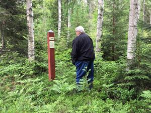 Runt om i Sverige ligger idag de gamla avrättningsplatserna tysta och igenvuxna, överbyggda och glömda.
