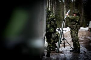 Försvarsmakten vill inte bygga upp ett nytt Dalregemente i Falun och Högbo - i alla fall inte de närmaste åren. Det framgår av försvarets analys av försvarsberedningens förslag.