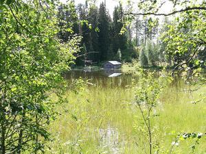 Häsbosjön var ett populärt utflyktsmål för att leta checkpoints. Här utsikt från en av platserna som deltagarna fick besöka.