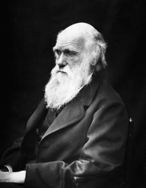 Charles Darwin 1869. Foto: J. Cameron