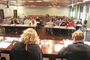 Ett oenigt kommunfullmäktige diskuterade driften av bibliotek, turistbyrå och grönytor. Entreprenörer kontra kommunal regi var frågan.