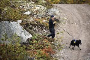 Polisens hundförare fortsätter att finkamma skogen i jakt på spår efter den försvunne mannen.