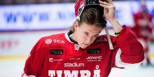 Timrå IK-backen Marcus Hardegård har beslutat att åtgärda sin axel, nu ska han opereras.