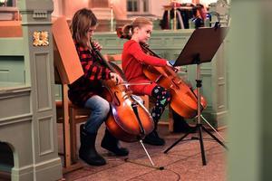 Det djupaste ljudet i den moderna violinfamiljen ekade genom kyrkan.