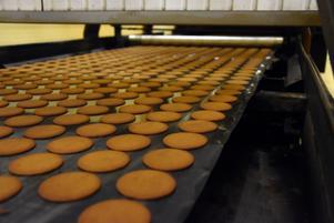 Ungefär en miljon pepparkakor produceras varje dag i fabriken i Bjurholm.