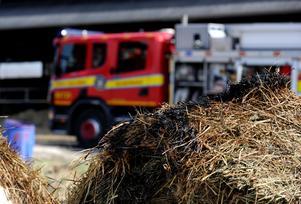 Ett larm om en brand i terrängen i Hosjö i Falu kommun inkom på måndagseftermiddagen. Ett gräseldning hade spridit sig till ett träd. Obs: Bilden är tagen i ett annat sammanhang.