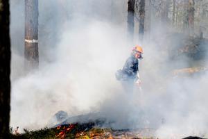 Länsstyrelsen Dalarna har upphävt eldningsförbudet som har gällt i Dalarna de senaste veckorna. Obs: Bilden är tagen i samband med en naturvårdsbränning.