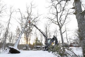 Jan-Åke Rosenqvist, teknisk specialist på Vattenfall, höjer ett varningens finger till allmänheten. – Undvik att gå i närheten av elstolpar ifall att kablar ligger på marken och kapa inga träd som ligger mot elstolpar eller ledningar. Det kan vara förenat med livsfara. Kontakta istället Vattenfall på telefon 020-825858, säger han.