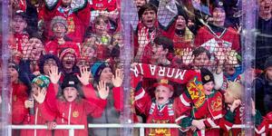 En samling unga Morasupportrar. Foto: Daniel Eriksson/BILDBYRÅN