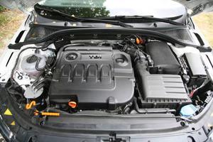 Dieselmotorn på 2,0 liter och 150 hästkrafter trivs bäst i kombination med DSG-växellåda.Foto: Rolf Gildenlöw