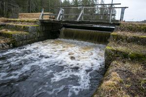 Enligt Fortum bidrar inte dammarna till energiproduktionen vilket gör det olönsamt att anpassa anläggningarna till ny miljölagstiftning.