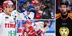Hur påverkas SHL, allsvenskan och Hockeyettan av utredningen? Foto: Bildbyrån.