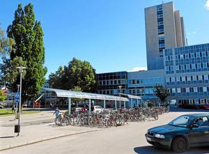 Maud Melin fick sin tumör bortopererad på Västerås sjukhus.