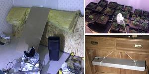 I ett rum (bilden till vänster) hittar polisen tomma krukor, samt blomjord på flera ställen. Fönstret är dessutom igenbommat för att dölja odlingen. Bild: Polisen Bilder: Polisen