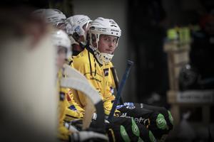 Jonas Pettersson hade ett par lägen i matchen som hade kunnat resultera, men anfallaren lämnade isen mållös.