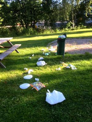 Så här såg det ut i Folke Löfgrens park efter helgen. Foto: Privat